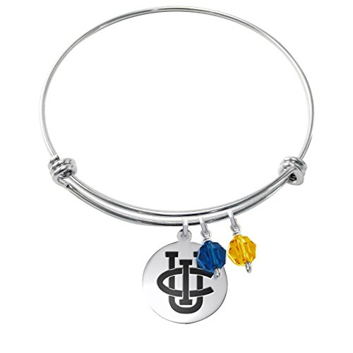 California Irvine Anteaters Stainless Steel Adjustable Bangle Bracelet with Round Charm & Crystal Accents