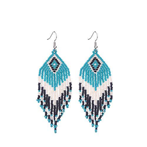 Native American Beaded Tassel Earrings with Fringe Seed Bead Boho for Women Long Dangle Beads Jewelry
