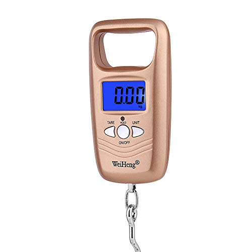 50Kg / 10G Portable Electronic Scale, Weight Mini Digital LCD Crane Scale Balance Electronic Luggage Scale Led Digital Display Luggage Scale Fishing Scale,Gold by LYA