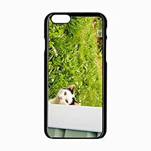 iPhone 6 Black Hardshell Case 4.7inch out grass window Desin Images Protector Back Cover