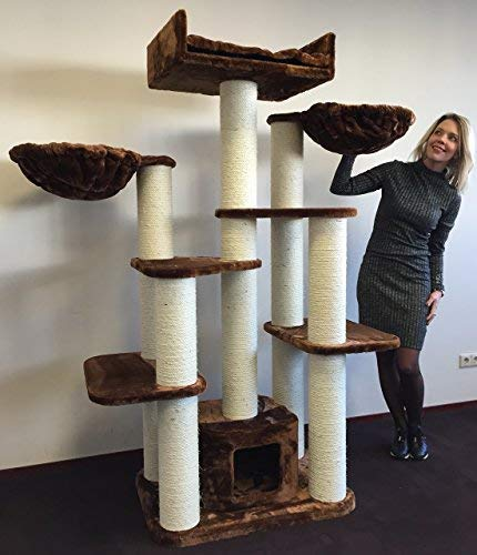RHRQuality Cat tree for large cats Maine Coon Fantasy Brown XXL extra big breed trees scratch post and adult towers Furniture scratcher activity centre