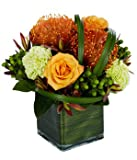 Christmas Flowers & Gift 2015 - Online Flowers - Wedding Flowers Bouquets - Birthday Flowers - Send Flowers - Flower Delivery - Flower Arrangements - Floral Arrangements - Flowers Delivered - Sending FlowersDoggy Supply Mall