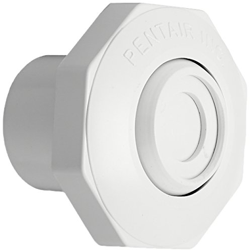 Pentair 542000 1-Inch Economy Insider Slip Inlet with Snap-In and Pressure Test Disk Wall Fittings, White