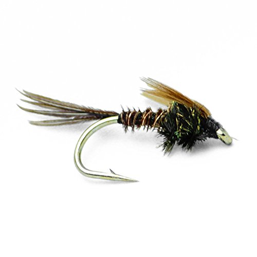 Feeder Creek Fly Fishing Nymph Flies - Pheasant Tail Nymph for Trout and Other Freshwater Fish - One Dozen - 4 Sizes 12,14,16,18 (16)
