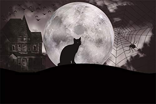 Yeele 5x3ft Halloween Night Backdrop Fantasy Full Moon Black Cat Spider Horror Ghost House in Dark Night Photography Background Magic Grave Terror Vampire Ghost Evil Party Decor Photoshoot Props -