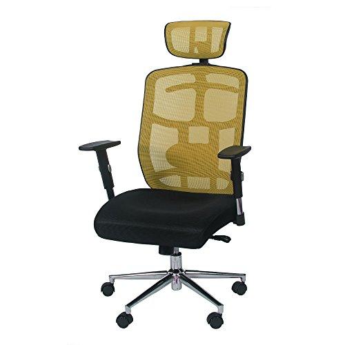 TOPSKY Skeletal Back Mesh Computer Office Chair Ergonomic Design Chair Synchronous Mechanism (YEL)