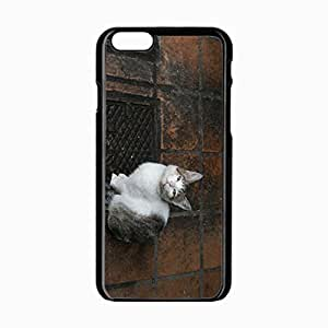iPhone 6 Black Hardshell Case 4.7inch kitten sit watch Desin Images Protector Back Cover by runtopwell