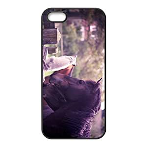 Horse And Cat Hight Quality Plastic Case for Iphone 5s