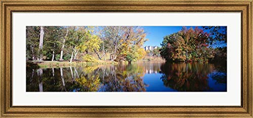 (Reflection Trees in a Lake, Biltmore Estate, Asheville, North Carolina Panoramic Images Framed Art Print Wall Picture, Wide Gold Frame, 41 x 19 inches)