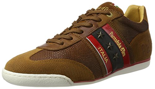 Funky Homme Tortoise Baskets Shell Marron Low Pantofola Jcu Imola Uomo d'Oro Y8w4wAqE