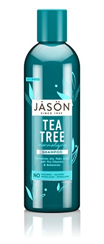 JASON Normalizing Tea Tree Treatment Shampoo, 17.5 oz. (Packaging May Vary)