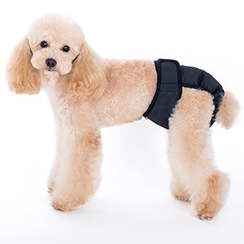 Dog Sanitary Garments - Alfie Pet - Max Diaper Dog Sanitary Pantie - Color: Black, Size: XL (for Girl Dogs)