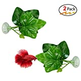 Cousduobe 2 Pack Betta Fish Leaf Pad - Improves Betta's Health by Simulating The Natural Habitat( Double Leaf Design, one Big and one Small )