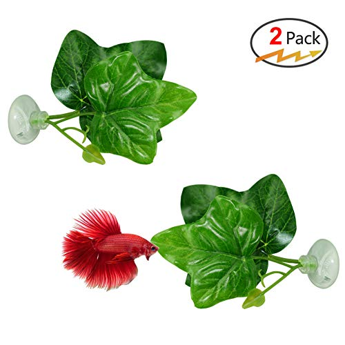 ta Fish Leaf Pad - Improves Betta's Health by Simulating The Natural Habitat( Double Leaf Design, one Big and one Small ) ()