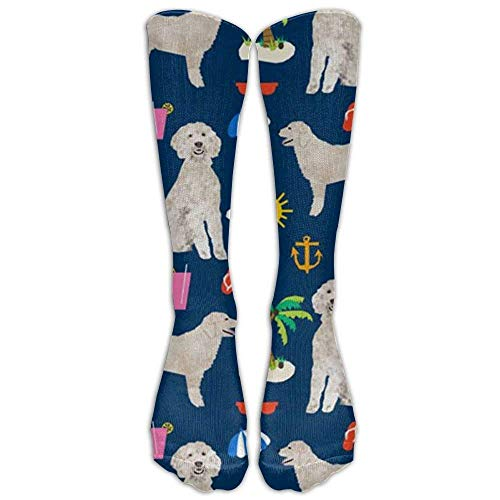 (Golden Doodle Dog Beach Summer Graduated Compression Socks for Men & Women Best Stockings for Nurses, Travel, Running, Maternity Pregnancy)