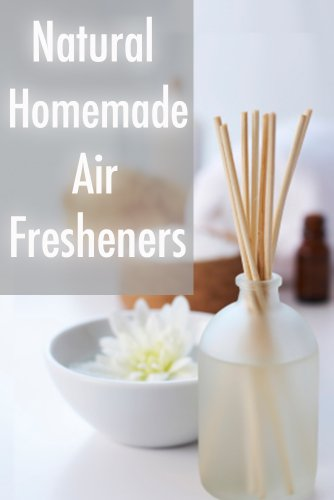 Natural Homemade Air Fresheners :The Ultimate Guide (Air Store Freshener Home The)