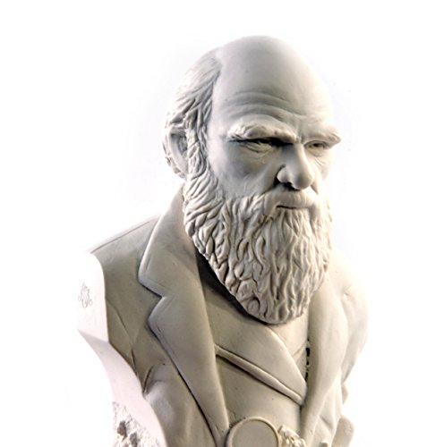 Modern Souvenir Co. Charles Darwin Statuette - Famous Faces Collection Plaster Bust ()