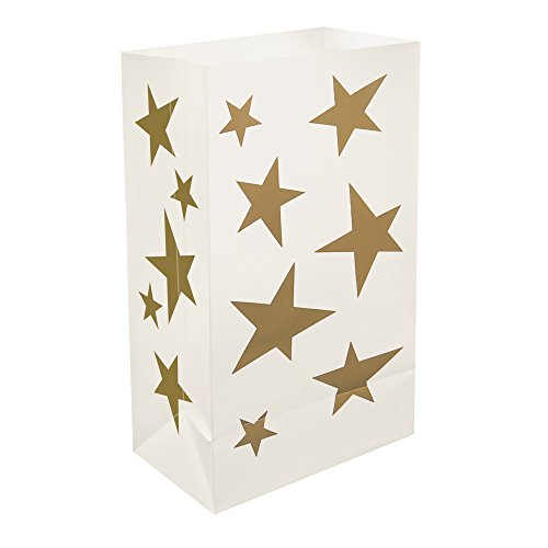 Luminaria Bags With Led Lights - 7