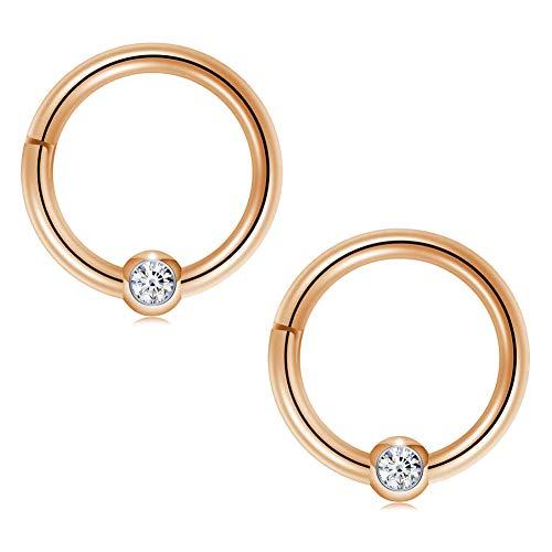 (FECTAS 16G Cartilage Earrings Hoop Nose Rings Helix Daith Tragus Earring Hinged Clicker Segment Lip Septum Ring 10mm )