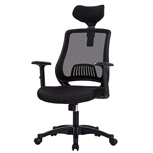 Built In Lumbar Support - LIANFENG High Back Ergonomic Office Chair - Mesh Computer Desk Task Chair with Adjustable Headrest and Armrests, Built-in Lumbar Support, Black