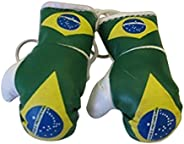 Flag Mini Small Boxing Gloves to Hang Over Car Automobile Mirror – Americas