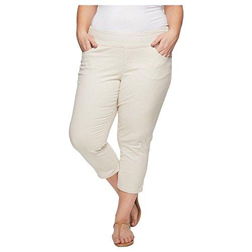 パイロッカーブランド名(ジャグ ジーンズ) Jag Jeans Plus Size レディース ボトムス?パンツ クロップド Plus Size Peri Straight Pull-On Twill Crop [並行輸入品]