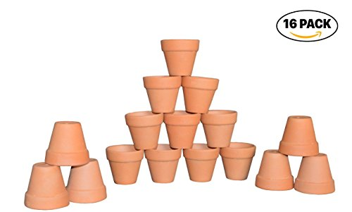 """My Urban Crafts 2"""" Mini Terracotta Clay Pots - Great For Succulent & Cactus Nursery Planter, DIY Craft Projects, Wedding and Party Favors (Set of 16)"""