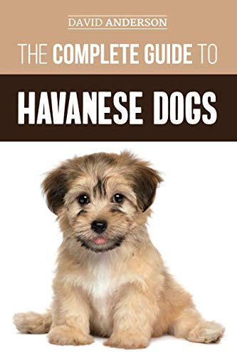The Complete Guide to Havanese Dogs: Everything You Need To Know To Successfully Find, Raise, Train, and Love Your New Havanese Puppy by Independently published