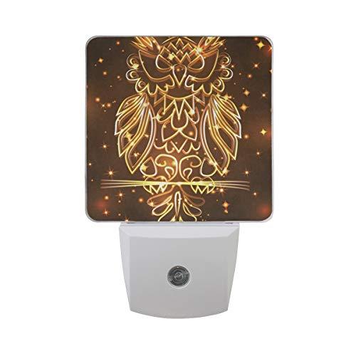 Night Light Funny Fantasy Mystical Bohemian Owl Bird Led Light Lamp for Hallway, Kitchen, Bathroom, Bedroom, Stairs, DaylightWhite, Bedroom, Compact