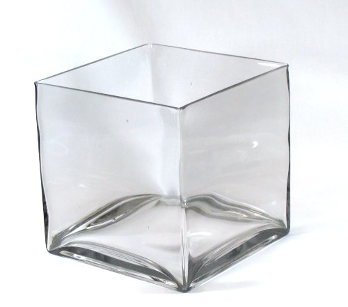 "Concord 8"" Square Large Glass Vase - 8 Inch Clear Cube Ov..."