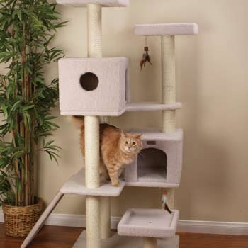 Petco Premium Tree Highrise for Cats, 26.7″ L X 30.7″ W X 65.5″ H, My Pet Supplies