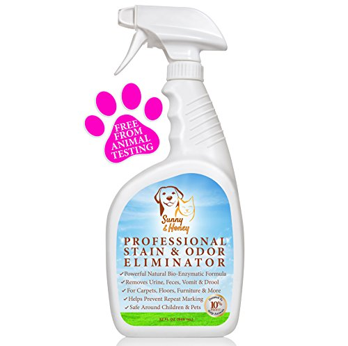 My Dog Ate Carpet Fibers: 10 Best Carpet Stain Removers 2019