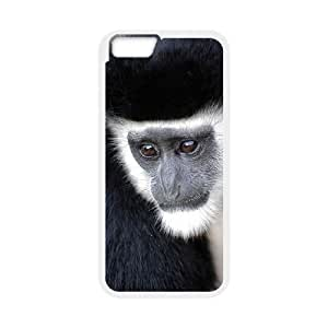"""D-PAFD Cover Shell Phone Case Monkey For iPhone 6 Plus (5.5"""")"""