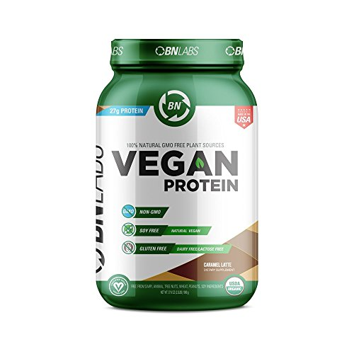 Organic Vegan Protein Powder  27g Protein RAW Certified Organic NonGMO Fully Natural Plant Based – Low Carb NO Sugar  No Dairy Gluten or Soy – High Protein  USA 30 Serving Caramel Latte