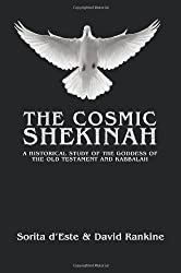 The Cosmic Shekinah