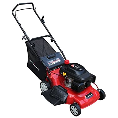 Power Smart DB6902 196cc Gas Powered 3-in-1 Lawn Mower, 20-Inch