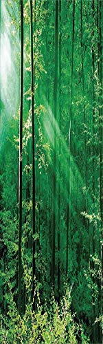 (Farm House Decor 3D Decorative Film Privacy Window Film No Glue,Frosted Film Decorative,Sunlight Bursting into the Forest Trees Foliage Misty Morning Serenity Picture,for Home&Office,23.6x59Inch)