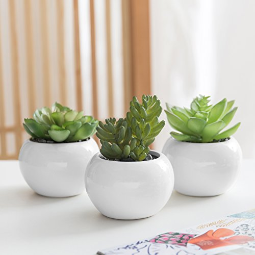 MyGift 3-Piece Small Faux Succulent Plants in Round Ceramic Pots by MyGift