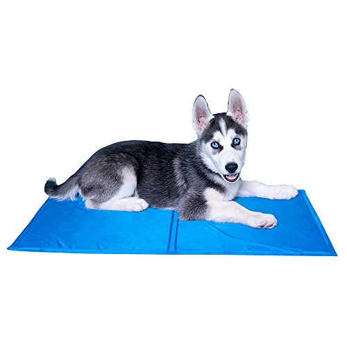 Pet Dog Cooling Mats for Small Dogs and Cats, Self Cooling Mat Pad - Great for Dog Beds and Crates by Downtown Pet Supply