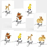 16 x Woodland Animal Thank You Card Set (4 x A6 Card Designs) with 16 envelopes - Great Value Multi Pack eco-Friendly Recycled - Ideal for Birthday, Office, Christmas Thank You