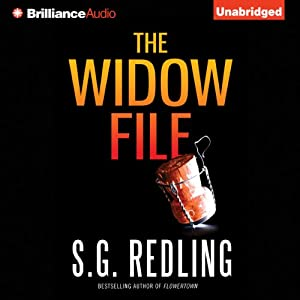 The Widow File Audiobook