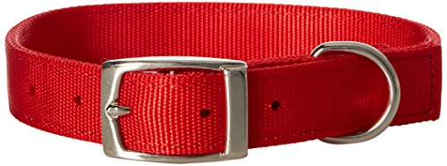 (Petmate Aspen PET Products 21286 Nylon Dog Collar, 1 by 20-Inch, Red)