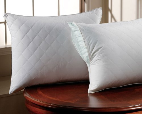 PopularHome Collection Zippered Quilted Pillow
