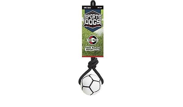 Deportes Perro TPR Toss N Fetch balón de fútbol con Cuerda para ...
