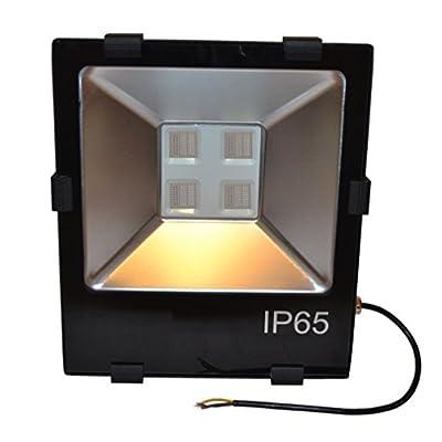 Zesol 200w RGB LED Flood Light Bridgelux Chip Ip65 Outdoor Waterproof Ac 110v