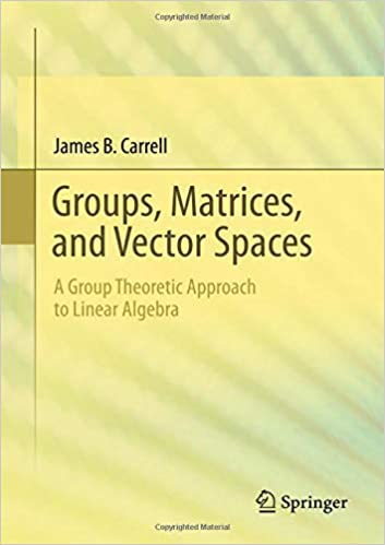 Groups, Matrices, and Vector Spaces: A Group Theoretic