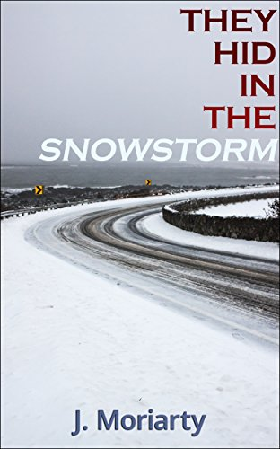They Hid In The Snowstorm (Jessica Carter Mysteries Book 2)