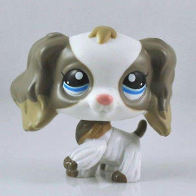 Porcupine Dog Costume (#2254 Rare Littlest Pet Shop white grey Cocker Spaniel Dog Blue Eyes Animal LPS)