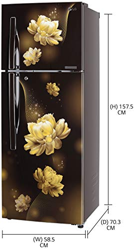 LG 284 L 2 Star Smart Inverter Frost-Free Double Door Refrigerator (GL-T302RHCY, Hazel Charm, Convertible) 2021 July Frost Free Refrigerator: Auto defrost function to prevent ice-build up Capacity 284 L: Suitable for families with 2 to 3 members or bachelors Energy Rating: 2 Star