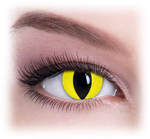Women Multicolor Cute Charm and Attractive Eye Accessories Cosmetic Makeup Eye Shadow - Yellow Cat with Contact Lens Case By Dress You Up TM